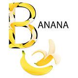 Alphabet B Letter