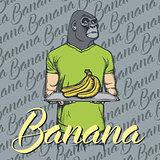Vector gorilla with bananas illustration