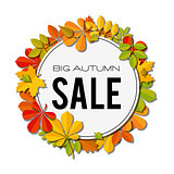 Sale banner with bright autumn leaves isolated on white background.