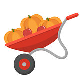 Wheelbarrow with pumpkins, icon flat style. Isolated on white background. Vector illustration