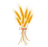 Wheat icon flat style. Isolated on white background. Vector illustration