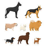 Vector illustrations set of different kinds of dog