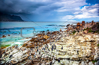 Amazing landscape of Betty's Bay