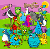 bird characters group cartoon illustration