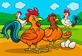 chicken characters group cartoon illustration