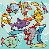 funny fish cartoon characters group