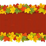 Vector Knitted Border with Maple Leaves