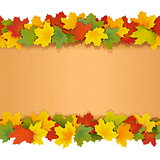 Vector Paper Border with Maple Leaves