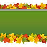 Vector School Blackboard with Maple Leaves