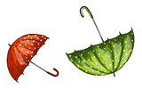 Two opened green and red umbrellas isolated on white background. Vector