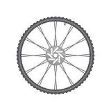 Black metallic bicycle wheel