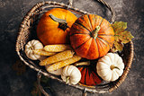 Pumpkins and corn in the basket