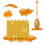 Sweet Honey Combs