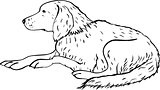 Stylized dog line art. Artistic animal silhouette