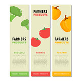 Design template of a vegetable vertical flyers.