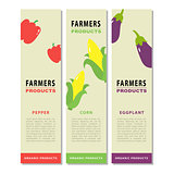 Design template of a vegetable vertical flyers 2.