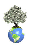Money tree with dollar banknotes on Earth