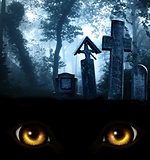 Monster eyes, medieval stone crosses and tombstones, cemetery in