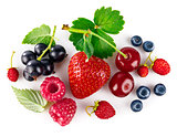 Organic berry fruity mix with green leaf
