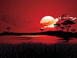 African Sunset Landscape