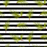 Pine tree branches on black striped background pattern.