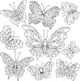 Set of different butterflies with beautiful wings