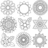Set of different flowers and floral patterns