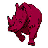 Red rhino on white background