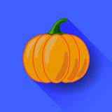 Orange Pumpkin Icon Isolated