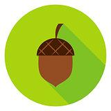 Acorn Circle Icon