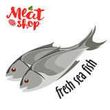 Meat vector - fresh sea fish icon. Fresh flat meat icon.