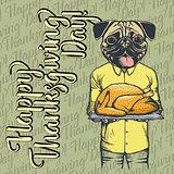 Vector illustration of Thanksgiving pug dog concept