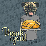 Vector illustration of Thanksgiving pug dog concept