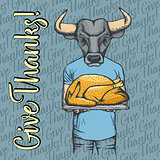 Vector illustration of Thanksgiving bull concept