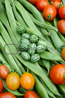 Green cucamelons and red tomatoes on runner beans