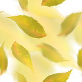 Yellow leaves seamless pattern. Blurred veector leaf on watercolor imitation background