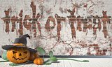 Trick or treat. Halloween greeting with Jack O Lantern pumpkin a