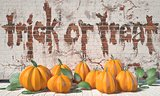 Trick or treat. Halloween greeting with pumpkins and green leafs