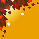 Autumn square background with red leafs on yellow