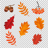 Autumn Set lsolated
