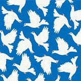 Dove on turn blue