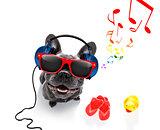 dog with music earphones