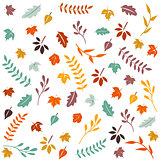 Hello Autumn, Autumn leaves background