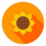 Sunflower Circle Icon