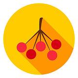 Rowan Circle Icon