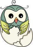 Cute owl in broken egg