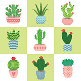 Cactus and succulent plants in pots. Illustration set of hand drawn cacti and succulents growing in cute little pots.