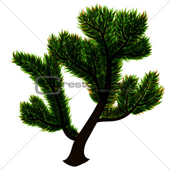 abstract isolated vector tree with green leaves