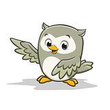 Cartoon Baby Owl
