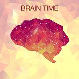 Human polygonal brain